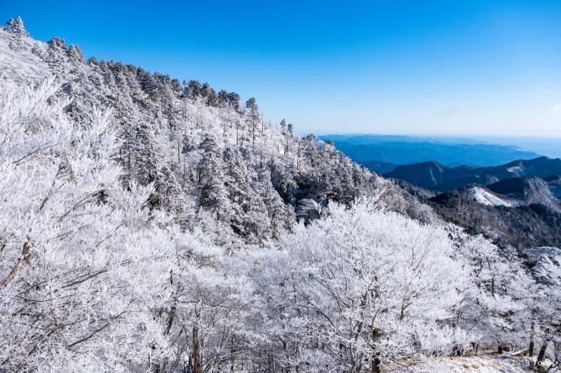 大台ヶ原が凍る日 2_c0350572_23123051.jpg