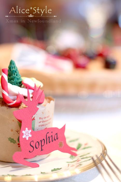 世界のクリスマス~カナダ~_f0306287_09324243.jpg