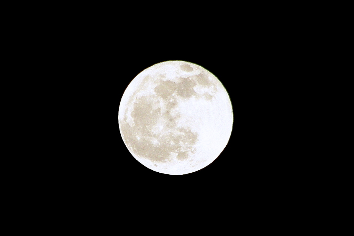 The Last full moon 2019_c0057390_19551839.jpg