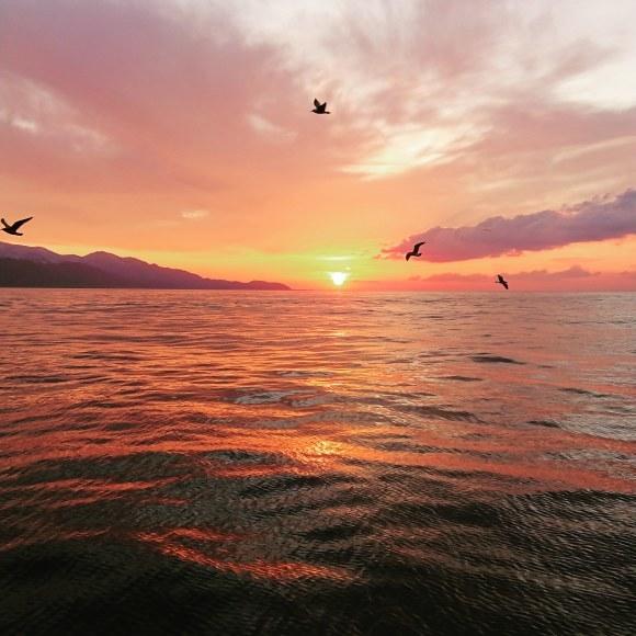 漁火 年末年始 営業いたします_d0235898_23344778.jpg