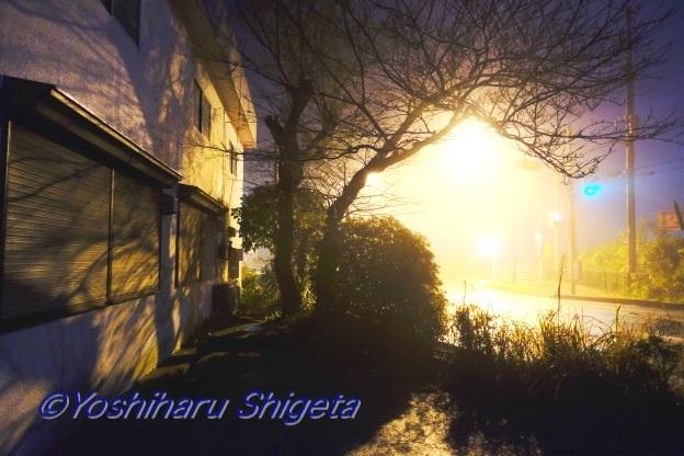 〜光よ〜_c0152400_06300898.jpg