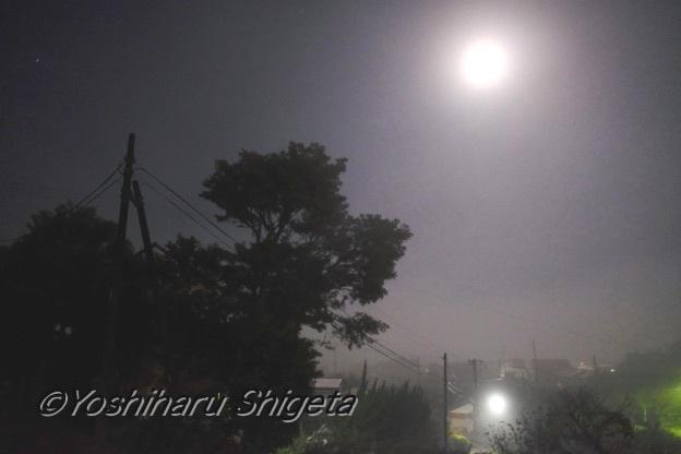 〜Old Road〜_c0152400_06305261.jpg