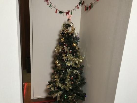 税理士試験合格発表、おめでとう!そしてクリスマスツリー_d0054704_19455940.jpg