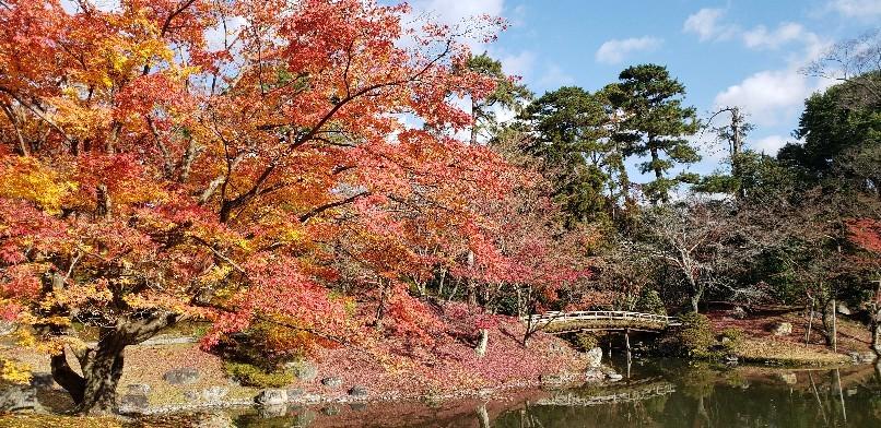 秋の京都_e0001906_14320504.jpg