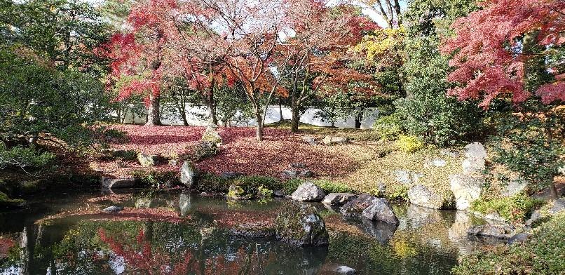 秋の京都_e0001906_14463289.jpg