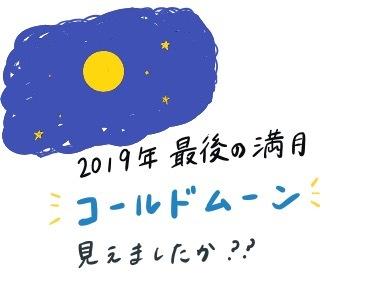 令和元年最後の満月(北山)_f0354314_00352511.jpeg
