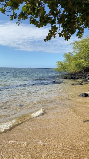 ハワイ旅行2019  ハワイ島編_c0141025_19464898.jpg