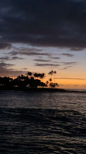 ハワイ旅行2019  ハワイ島編_c0141025_19493157.jpg