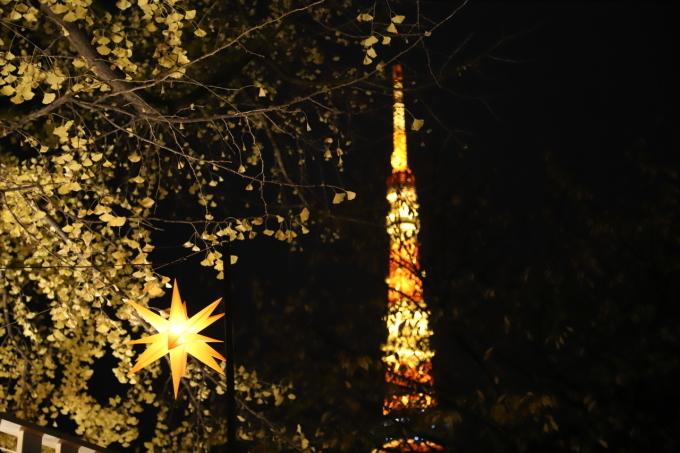 【東京クリスマスマーケット/芝公園】_f0348831_20251865.jpg