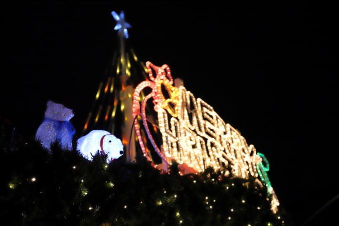 【東京クリスマスマーケット/芝公園】_f0348831_20252656.jpg