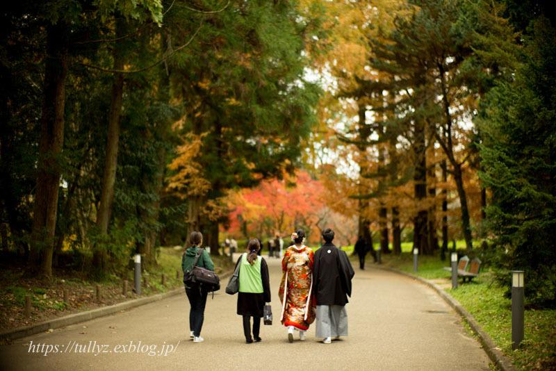 京都の秋2019(2)_d0108132_16024945.jpg