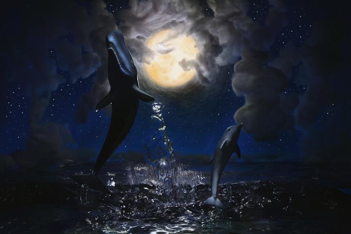 夜空に舞うクジラとイルカ_b0175635_11371558.jpg