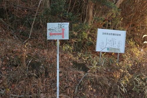 稲星山&中岳&久住山!_e0272335_2084356.jpg