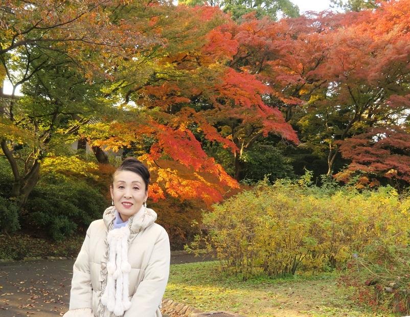 皇居乾通りで紅葉狩り、大嘗宮も見れました_b0089338_01134627.jpg