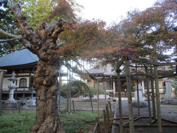 福島訪問 no.2_b0135942_11093659.jpg