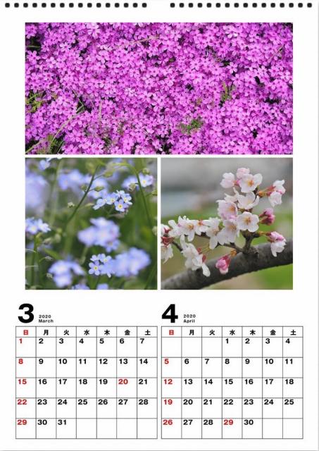 2020年 カレンダー作り_d0152544_08174463.jpg