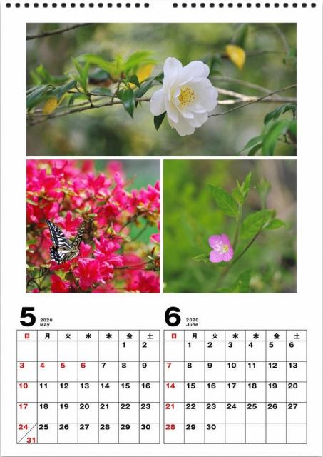 2020年 カレンダー作り_d0152544_08175471.jpg