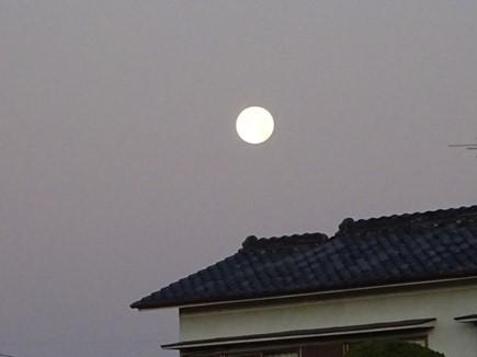 明け方の満月_f0089748_18454606.jpg