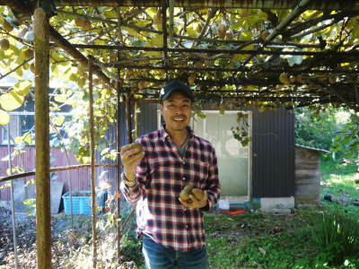 『水源キウイ』令和元年度も完売御礼!来年も無農薬、無化学肥料で大事に栽培していきます。キウイの落葉_a0254656_18112129.jpg