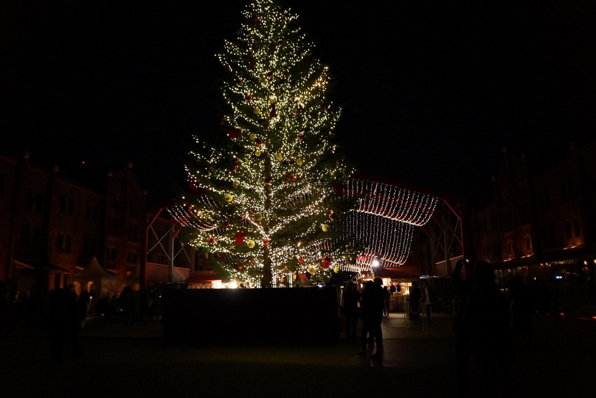 クリスマスライドのお知らせ♪_e0165756_23482139.jpg