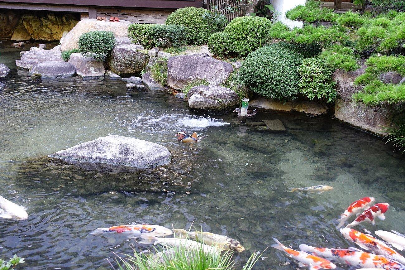 松田屋ホテル庭園(その1)_c0112559_08314155.jpg