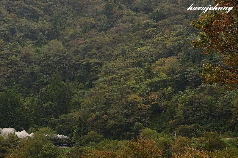 ポツンと蒸気機関車~SLやまぐち号~_c0173762_19083440.jpg