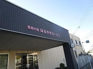 板野生活 ~冬の花~_c0218368_10204433.jpg