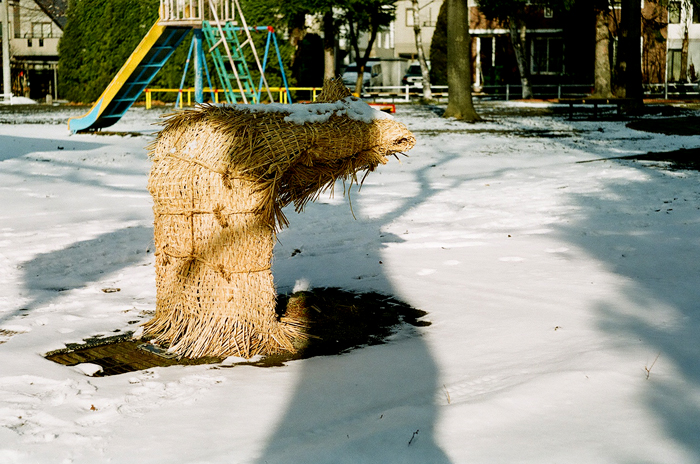 公園の冬対策とシャッター絶好調のレチナIB_c0182775_16433056.jpg