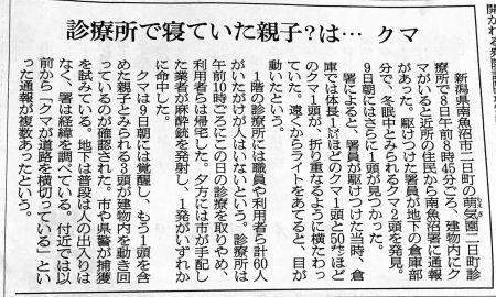 不思議な新聞の記事  クマの話_a0163788_22415418.jpg