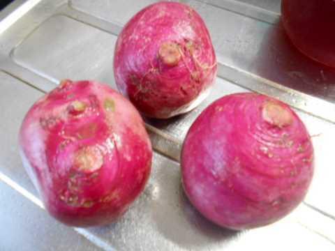 赤かぶで椿寿司&朝一番でお気に入りのパン屋へ_f0019498_08545124.jpg
