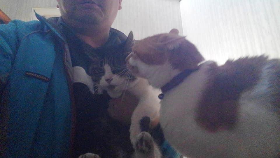 【猫】捕獲!_f0141609_16111102.jpg