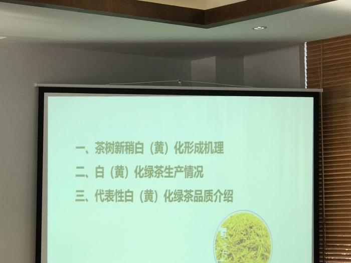 白(黄)化茶樹品種加工緑茶品質の講義@中国国際茶文化研究会_a0169924_00450638.jpeg