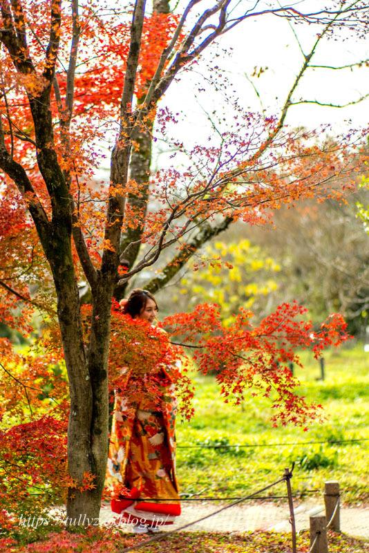 京都の秋2019(12)_d0108132_00542021.jpg
