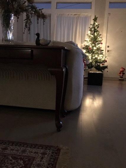 クリスマスのインテリア小物たち_d0269832_06101279.jpeg