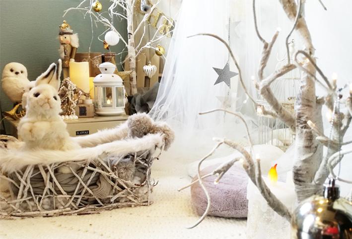 クリスマスが溢れる季節になりました。_d0351435_09403416.jpg