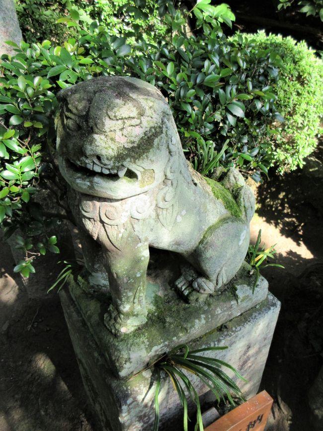 松田屋ホテル庭園(その2)_c0112559_08390371.jpg