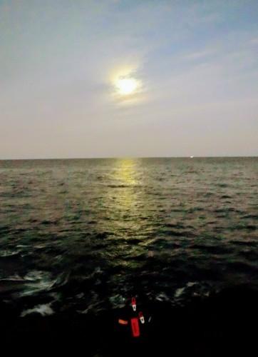 的山大島釣行_d0195183_19432060.jpg