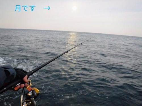 的山大島釣行_d0195183_20363343.jpg