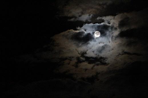 月光浴_a0333195_09281367.jpg