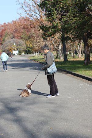 今日は久しぶりに「水元公園」に♪_c0090198_19590755.jpg