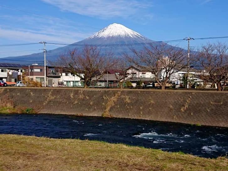 駿河 ライズ日和_f0266202_16471951.jpg
