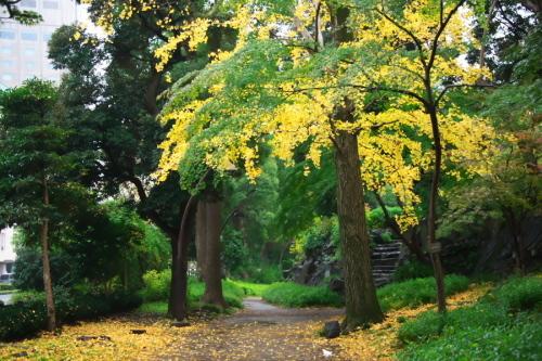 日比谷公園の紅葉1_a0263109_22163031.jpg