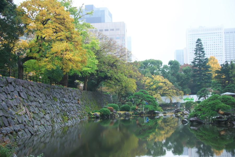 日比谷公園の紅葉1_a0263109_22163860.jpg