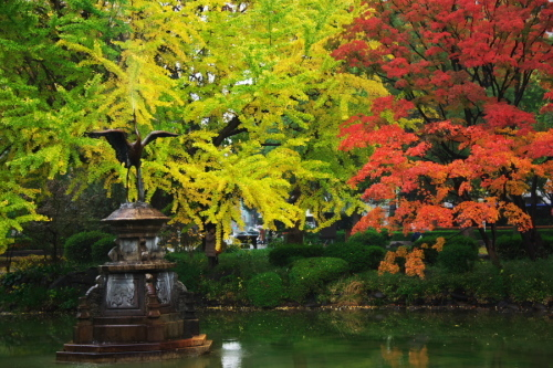 日比谷公園の紅葉2_a0263109_22221824.jpg