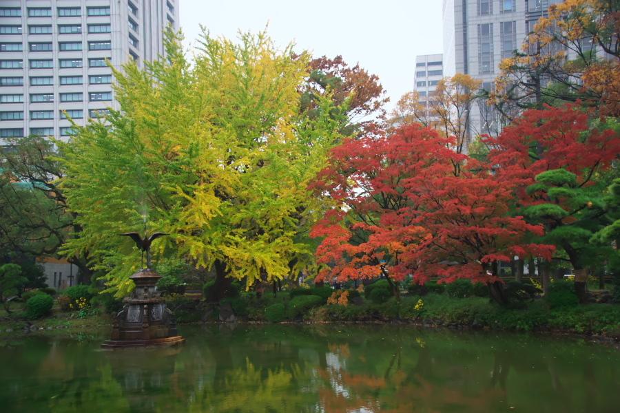 日比谷公園の紅葉2_a0263109_22221883.jpg