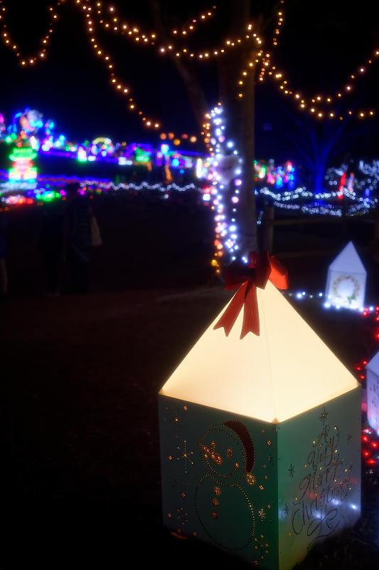 2019クリスマスイルミネーション@TWINKLE JOYO2019_f0032011_20041118.jpg