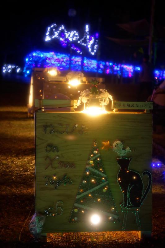 2019クリスマスイルミネーション@TWINKLE JOYO2019_f0032011_20041119.jpg