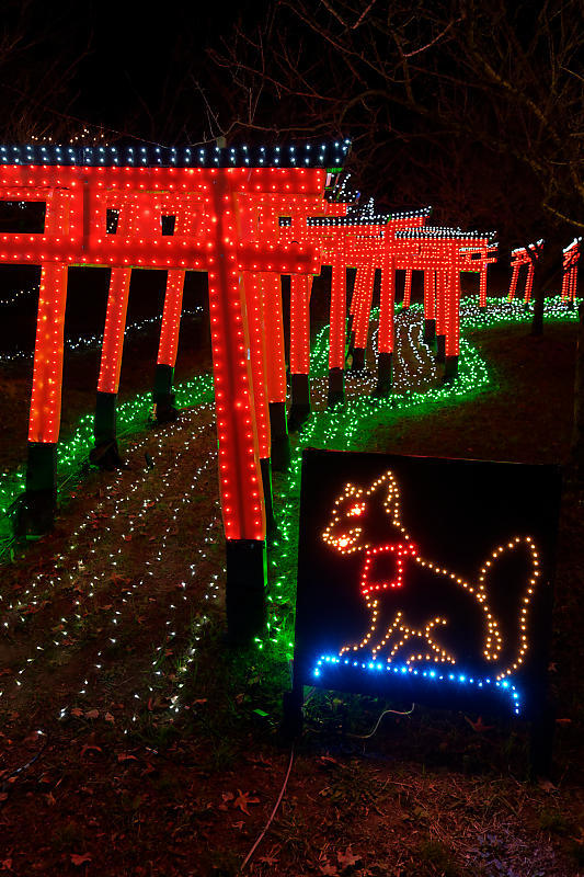 2019クリスマスイルミネーション@TWINKLE JOYO2019_f0032011_20064812.jpg