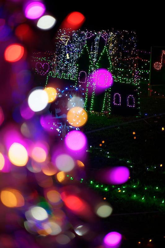 2019クリスマスイルミネーション@TWINKLE JOYO2019_f0032011_20331641.jpg