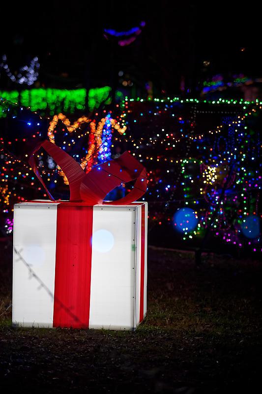2019クリスマスイルミネーション@TWINKLE JOYO2019_f0032011_20332435.jpg